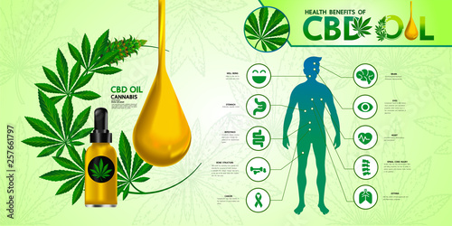 Foto  Cannabis benefits for health vector illustration.