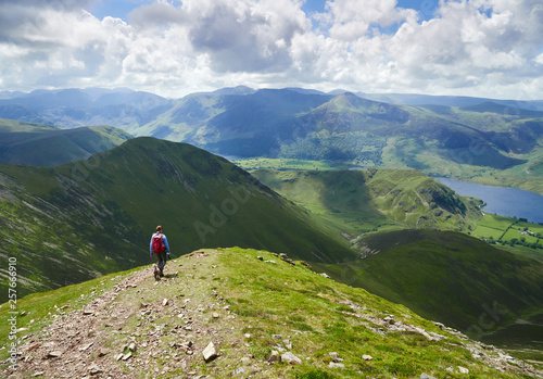 Valokuvatapetti A female hiker and their dog descending from Grasmoor down Lad Hows above Buttermere on a sunny day in the English Lake District, UK