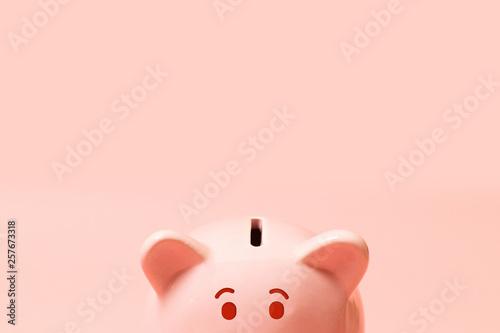 Pinturas sobre lienzo  Piggy bank on living coral background