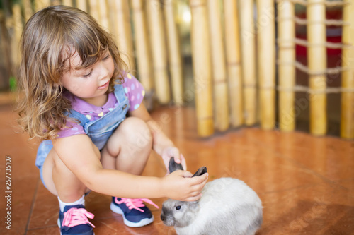 Fotografía  Adorable little girl playing with rabbit at the petting zoo
