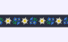 Seamless Pattern Border With Edelweiss