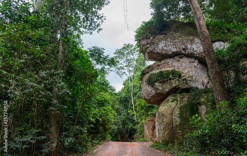 Photo  Huge rock formation in the jungles of the Kulen Mountains near Siem Reap