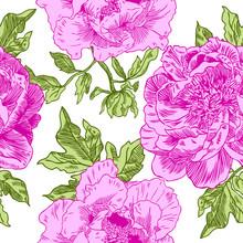 Pink Peonies Seamless Pattern