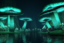 Tall Glowing Mushrooms Along A...