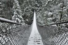 Lynn Valley Park On Snowy Day