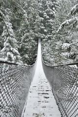 Fototapeta Mosty Lynn Valley Park on snowy day