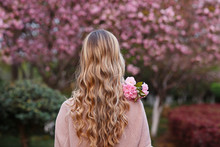 Beautiful Young Woman With Long Curly Blonde Hair From Behind Holding Blooming Branch Of Sakura Tree