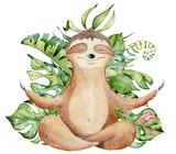 Lenistwo jogi akwarela w pozycji lotosu ilustracja ładny ręcznie rysowane - 257810905