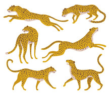 Set Of Abstract Silhouettes Of Leopards. Vector Hand Draw Design.