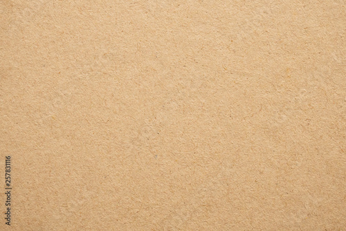 Old Brown Recycle Paper Texture Background Canvas Print