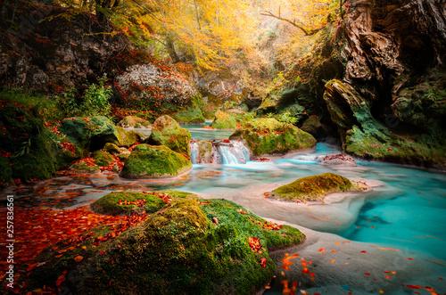 Photo rio y cascada del parque natural del rio urederra en navarra