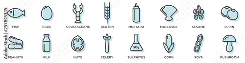 Fototapeta Food allergy icons. Basic allergens and diet line icons vector set. Isolated on white background . obraz