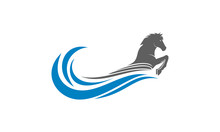 Horse And Wave Vector