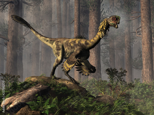 Fotografie, Obraz Citipati was a oviraptor theropod, a bird-like dinosaur that lived during the Cretaceous period in Asia