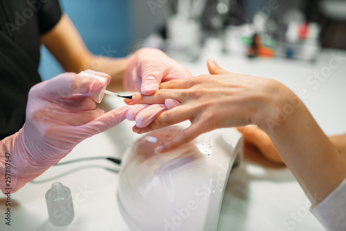 In de dag Manicure Manicure master applying nail varnish