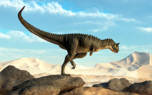 A Brown Carnotaurus Hunts For ...