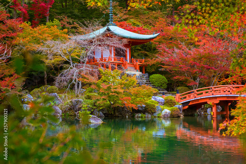 Foto op Canvas Japan Beautiful japanese garden with colorful maple trees in autumn, Kyoto