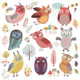 Fototapeta Fototapety na ścianę do pokoju dziecięcego - Cute Woodland owls. Funny characters with different mood. Vector illustration.