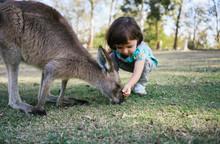 Australia, Brisbane, Little Gi...