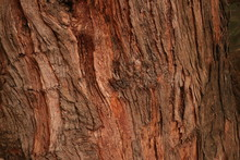 Wooden Photography Byphotographer Nik .. Good Resolution Picture For Desktop Or Wallpaper