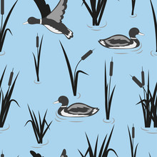 Seamless Pond Pattern With Reeds And Ducks. Vector Water Background.