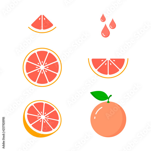 Fototapeta Grapefruit icon set on white background, vector isolated illustration