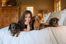 Portrait Of Smiling Woman With Dachshund Dogs Lying On Bed At Home