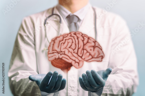 Fotografie, Obraz Image of a doctor in a white coat and brain above his hands
