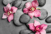 Zen Stones And Exotic Flowers ...