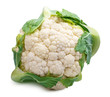Cauliflower isolated on white background. Clipping path