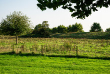 Green City Walls And Meadow In Retranchement, The Netherlands