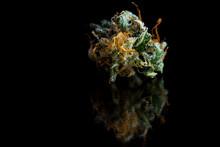 Beautiful Marijuana Close Up