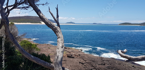 Fototapeta Fingal Bay From Barry Lookout NSW Australia