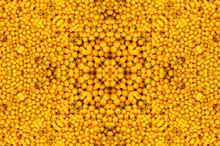 Abstract Fractal Kaleidoscope Yellow Tomato Background.Group Of Fresh Tomatoes.