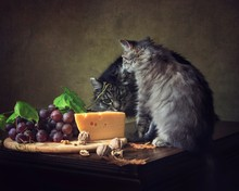 Still Life With Cheese And Gra...