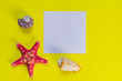Red starfish and sea shells on light yellow background with copy space. summer holiday and vacation concept