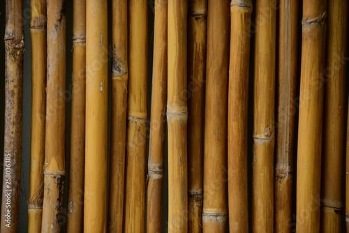 Bambusowy płot używany jako obraz tła