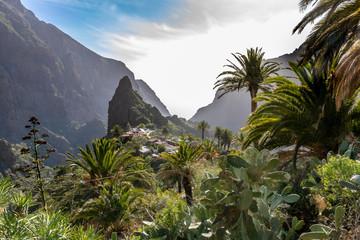Fototapeta na wymiar Masca - Tenerife