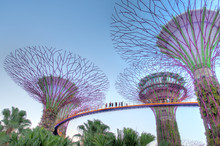 Singapore, Gardens By The Bay,...