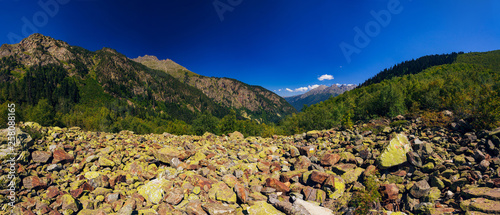 Foto auf Gartenposter Hugel A huge panorama of high Caucasus mountains and beautiful trees on a sunny summer day. A very large amount of stones.