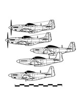 North American P-51 MUSTANG. Outline Drawing