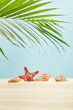 selective focus of red starfish and seashells on sand near green palm leaf on blue