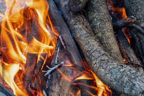 Fire and flames burning on logs  of a campfire ~FIRESIDE~