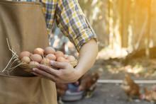 Young Smart Farmer Wear Plaid ...