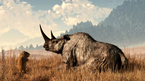 A marmot approaches an old and grey woolly rhinocerous Tablou Canvas