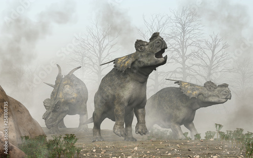 Fototapeta  Three achelousauruses search  a foggy landscape