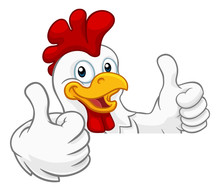A Chicken Rooster Cockerel Bird Cartoon Character Peeking Over A Sign And Giving A Double Thumbs Up