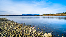 The Fraser River On The Shore Of Glen Valley Regional Park Near Fort Langley, British Columbia, Canada On A Nice Winter Day