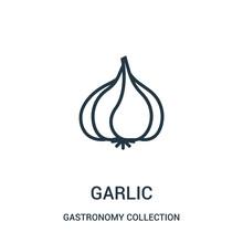 Garlic Icon Vector From Gastro...