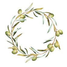 Wreath Of Green Olive Tree  Branches. Hand Drawn Watercolor Illustration.